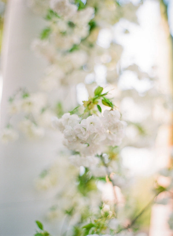 White and Green Wedding | Wedding Wednesday | Rochester NY Florist