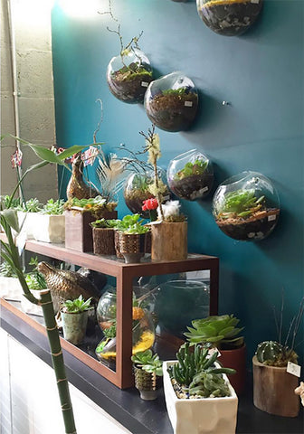 Succulent-Decor-from-Stacy-K-Floral-5
