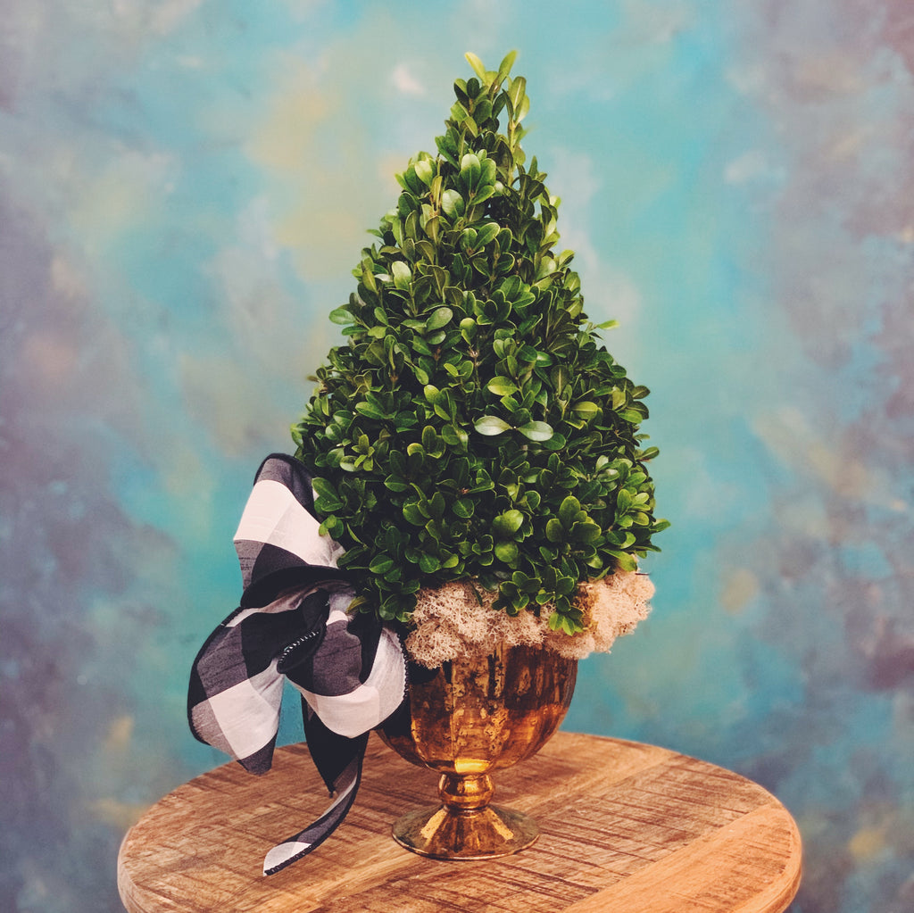 Boxwood tree centerpiece