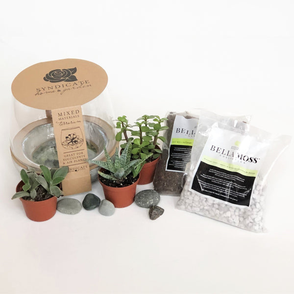 DIY Terrarium Kit with Houseplants- STACY K FLORAL Everything you need to create your own terrarium!  This kit includes:  Terrarium Three mini houseplants (assorted) One bag of soil One bag of drainage stones Decorative stones