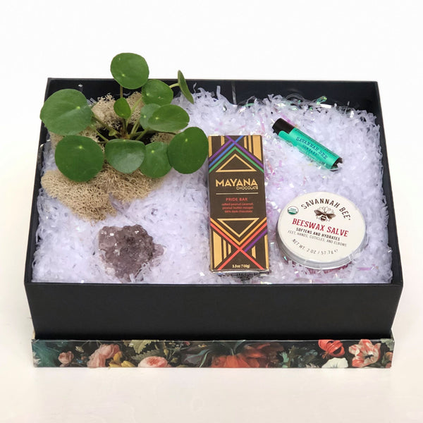 Plant and Treats Gift Box - STACY K FLORAL