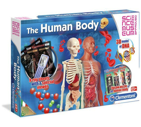 Clementoni Science Museum The Human Body