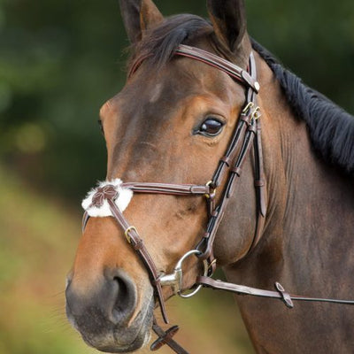 HFI MEXICAN BRIDLE - Pony / Brown - Pony / Black - Cob / Brown - Cob / Black - Full / Brown - Full / Black