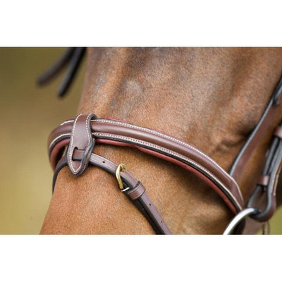HFI ANATOMIC BRIDLE