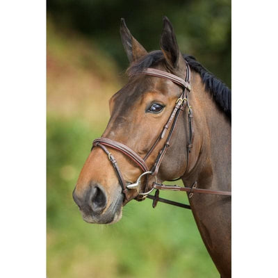 HFI BRIDLE COMFORT - Pony / Brown - Pony / Black - Cob / Brown - Cob / Black - Full / Brown - Full / Black