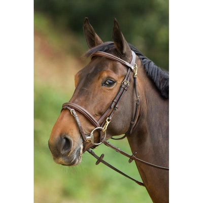 HFI FUNCTIONAL BRIDLE - Cob / Black - Cob / Brown - Full / Black - Full / Brown