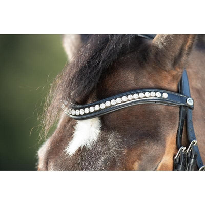 hfi shiny bridle, horse fitform international, bridon, zaum