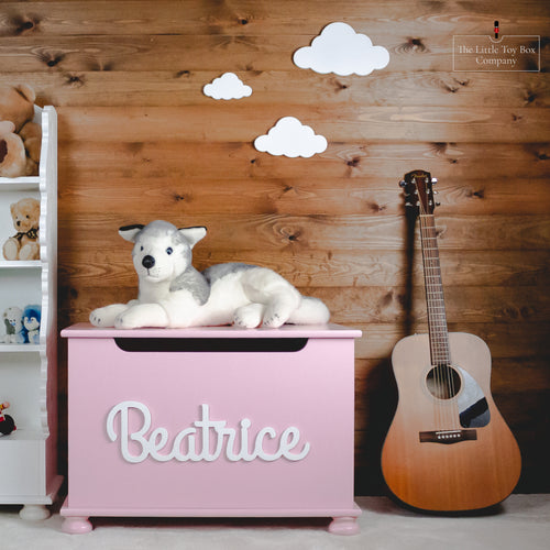 Luxury Toy Box With great vibes Joined Name