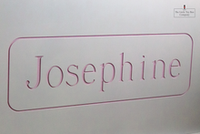 Load image into Gallery viewer, Luxury Engraved Josephine Toy Box