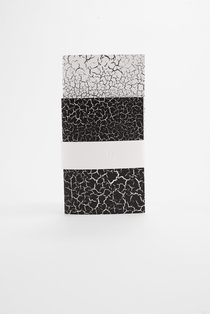 Fracture Monochrome - Pocket Notebooks Twin Pack