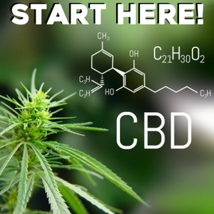 New to the whole CBD thing? Here's your quick rundown.