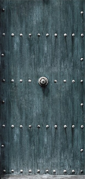 Fotomurale per porta - Stylish Door