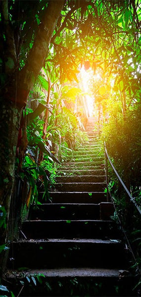 Fotomurale per porta - Photo wallpaper - Stairs in the urban jungle I