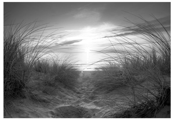 Fotomurale - beach (black and white)