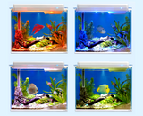 Acuario inteligente Hoison Fishstar Smart Aquarium