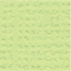 My Colors Cardstock Canvas 12x12 Single Sheet - Lime Pop