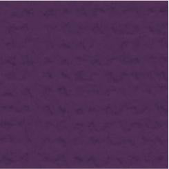 My Colors Cardstock Canvas 12x12 Single Sheet - Grape Vine
