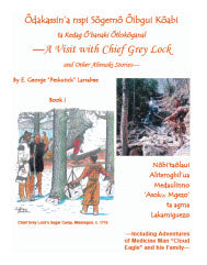 A Visit with Chief Grey Lock and Other Abenaki Stories, Book 1