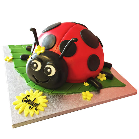 Ladybird Cake - Last minute cakes delivered tomorrow!