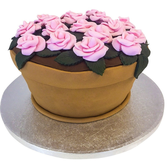 Flowerpot Cake - Last minute cakes delivered tomorrow!