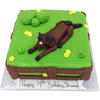 Horse Riding Cake - Last minute cakes delivered tomorrow!