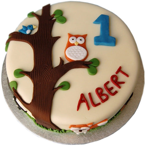 Owl Cake - Last minute cakes delivered tomorrow!