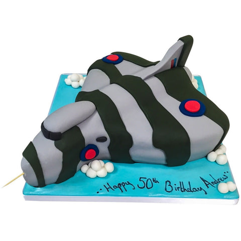 Vulcan Bomber Aeroplane Cake - Last minute cakes delivered tomorrow!