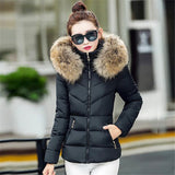 Fake fur collar Parka down cotton jacket 2016 Winter Jacket Women thick Snow Wear Coat Lady Clothing Female Jackets Parkas