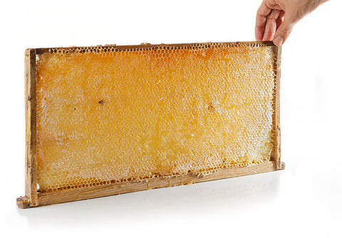 Large Whole Block/Sheet of Pure Raw Honey Comb 100% Organic