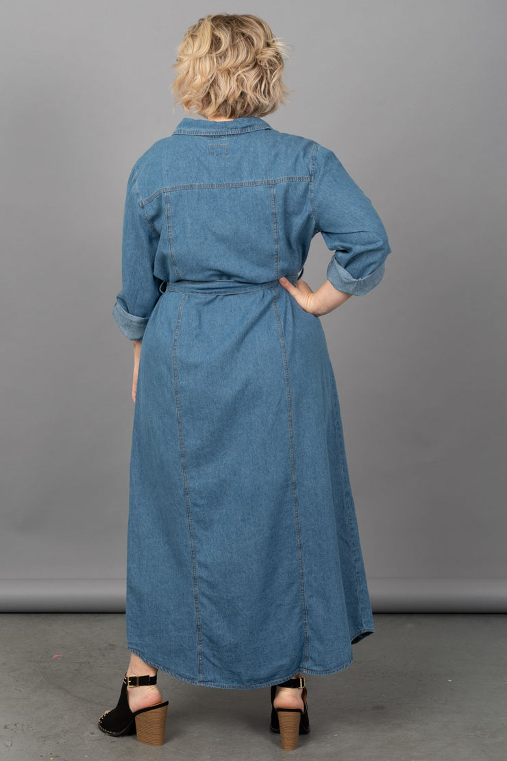 Dreaming of Denim Dress-Plus