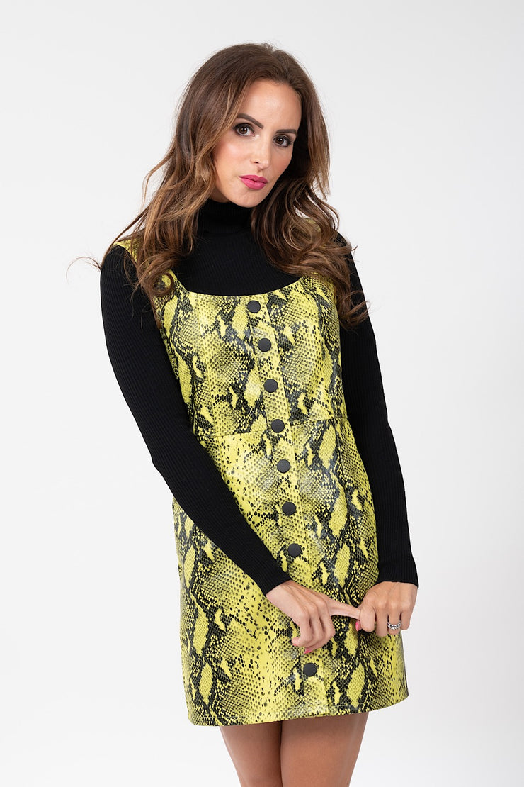 Cold Hearted Snakeskin Dress