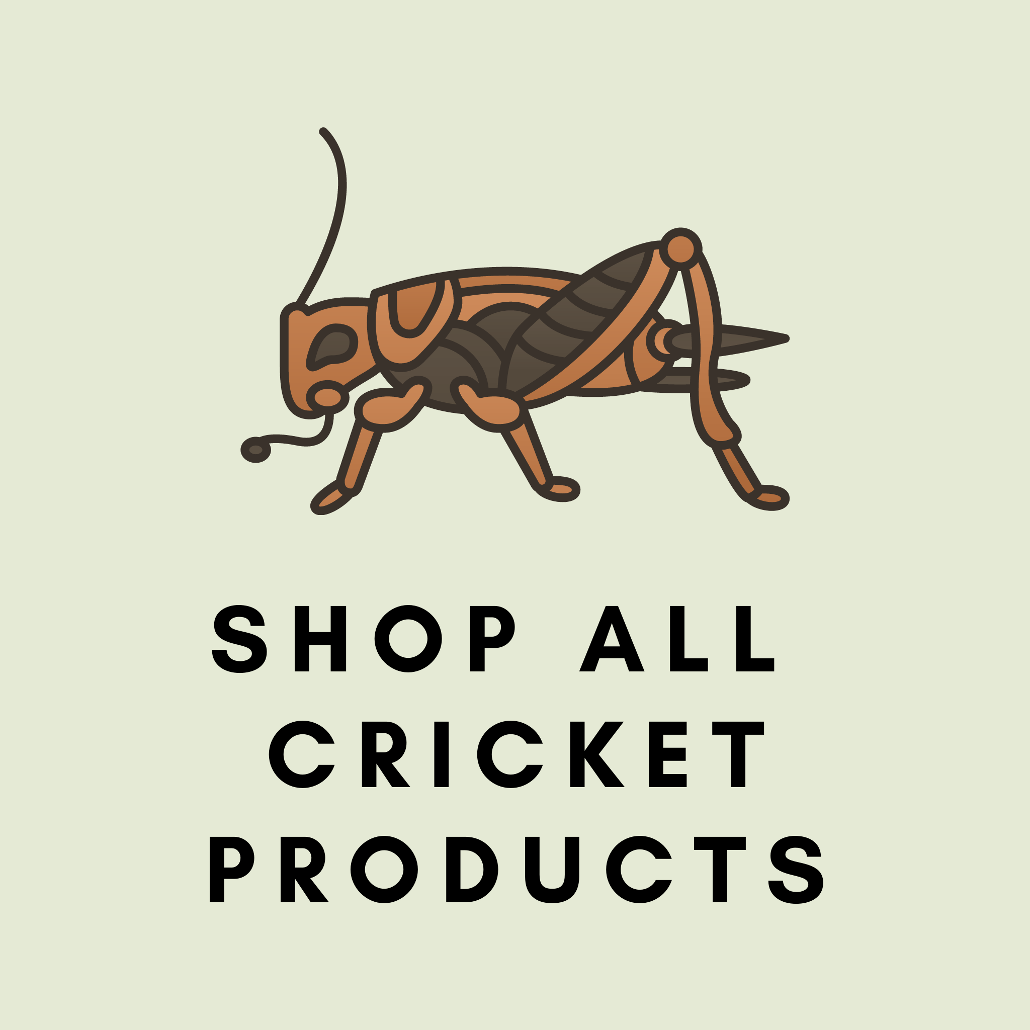Pre-Order: Cricket Products