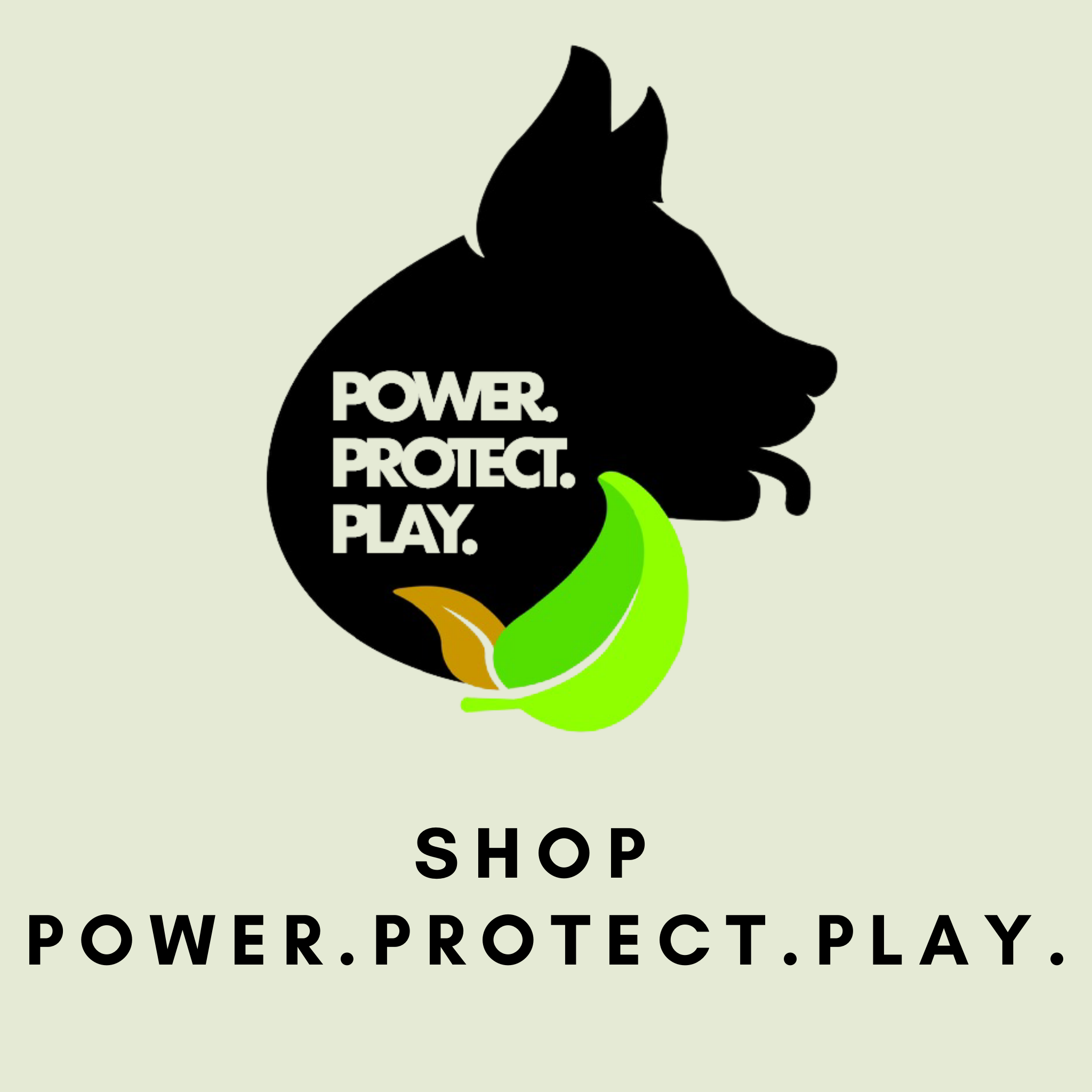 Pre-Order: Power. Protect. Play