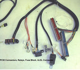 24x Main Stand Alone Engine Wiring Harness,,Schwanke Engines- Schwanke Engines LLC