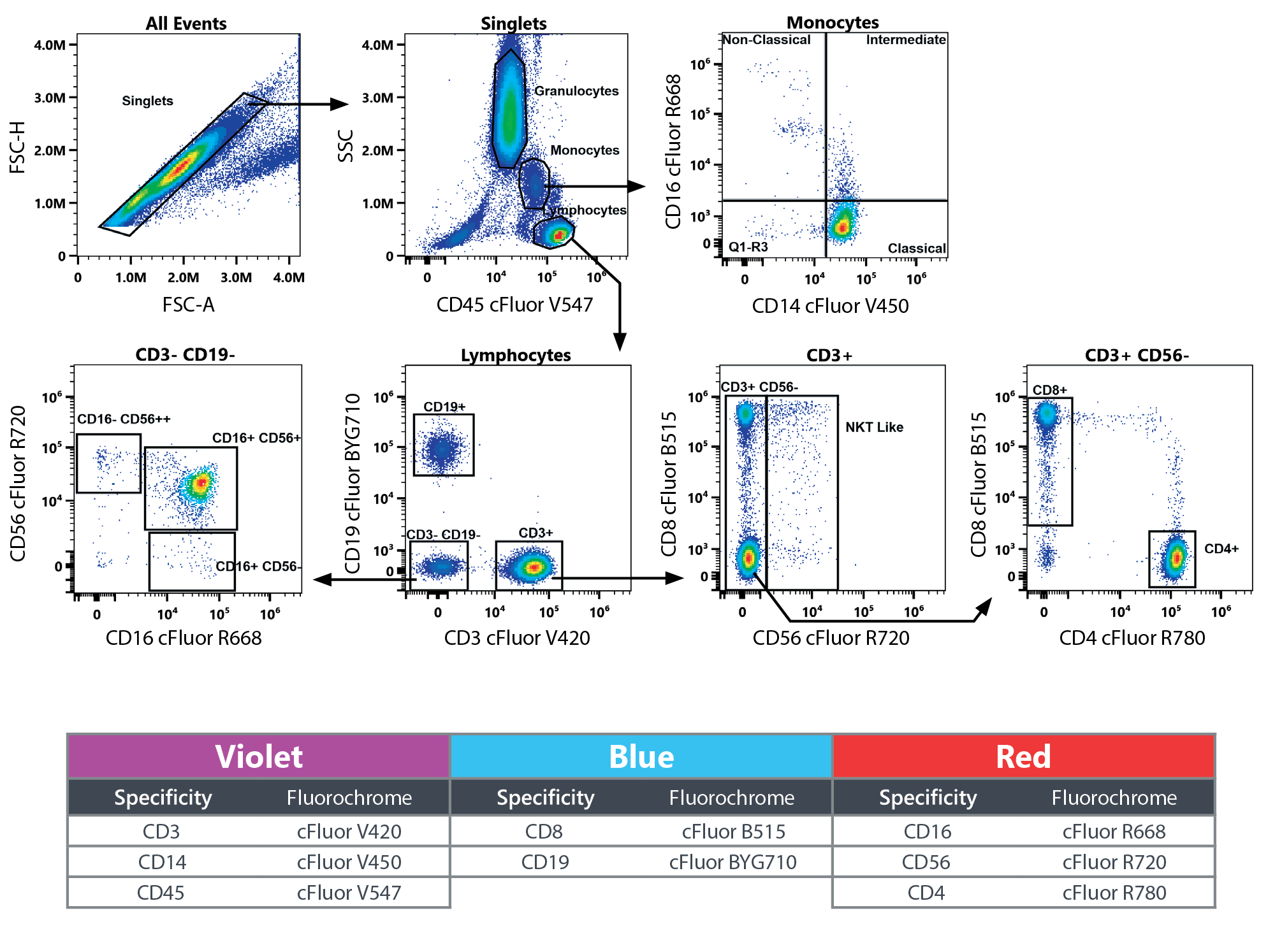 8-color TBMNK kit sample data and table of fluorochromes
