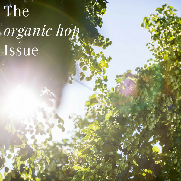 Our hero ingredient-the organic hop issue