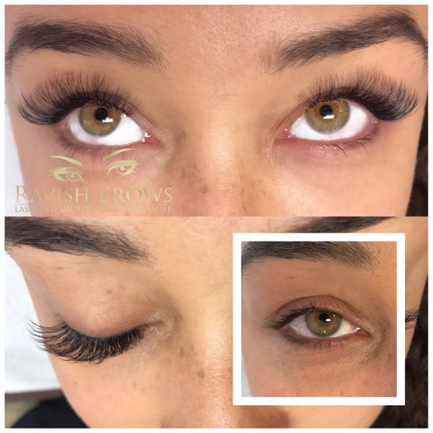 Ravish Brows Volume Tampa FL