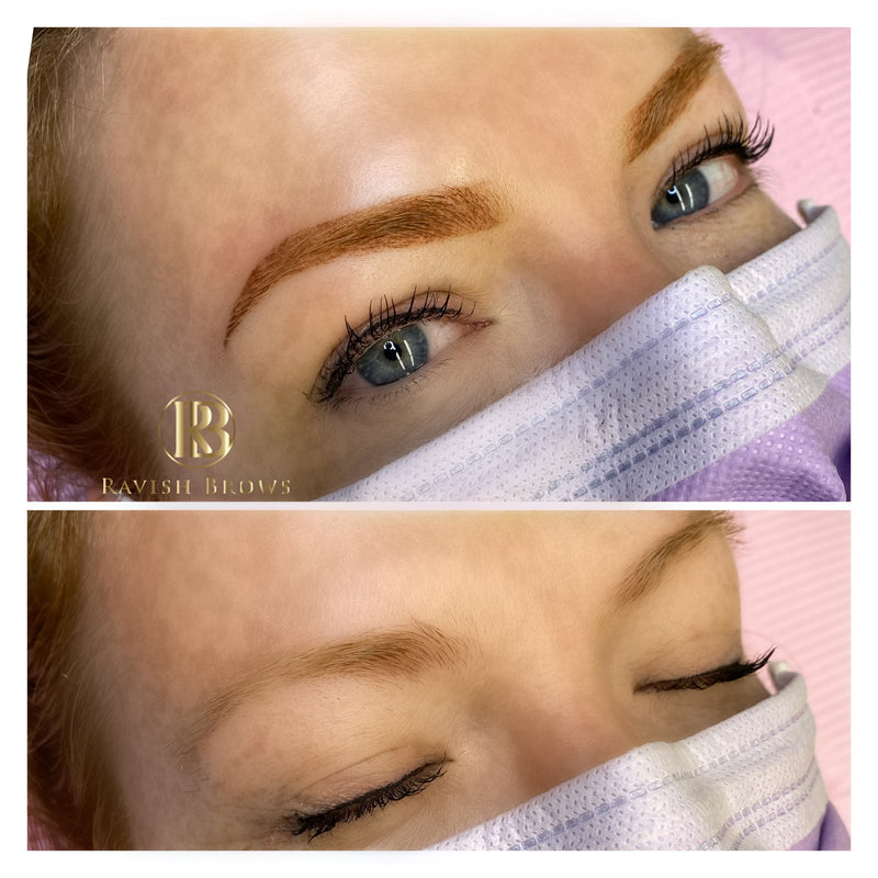 1-Day Powder Brows Training Course $1500.00
