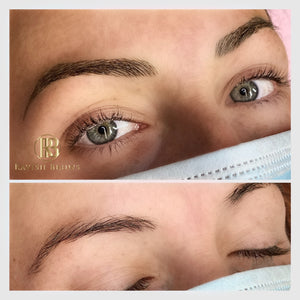 2-Day Combo Powder Brows and Microblading Training Course