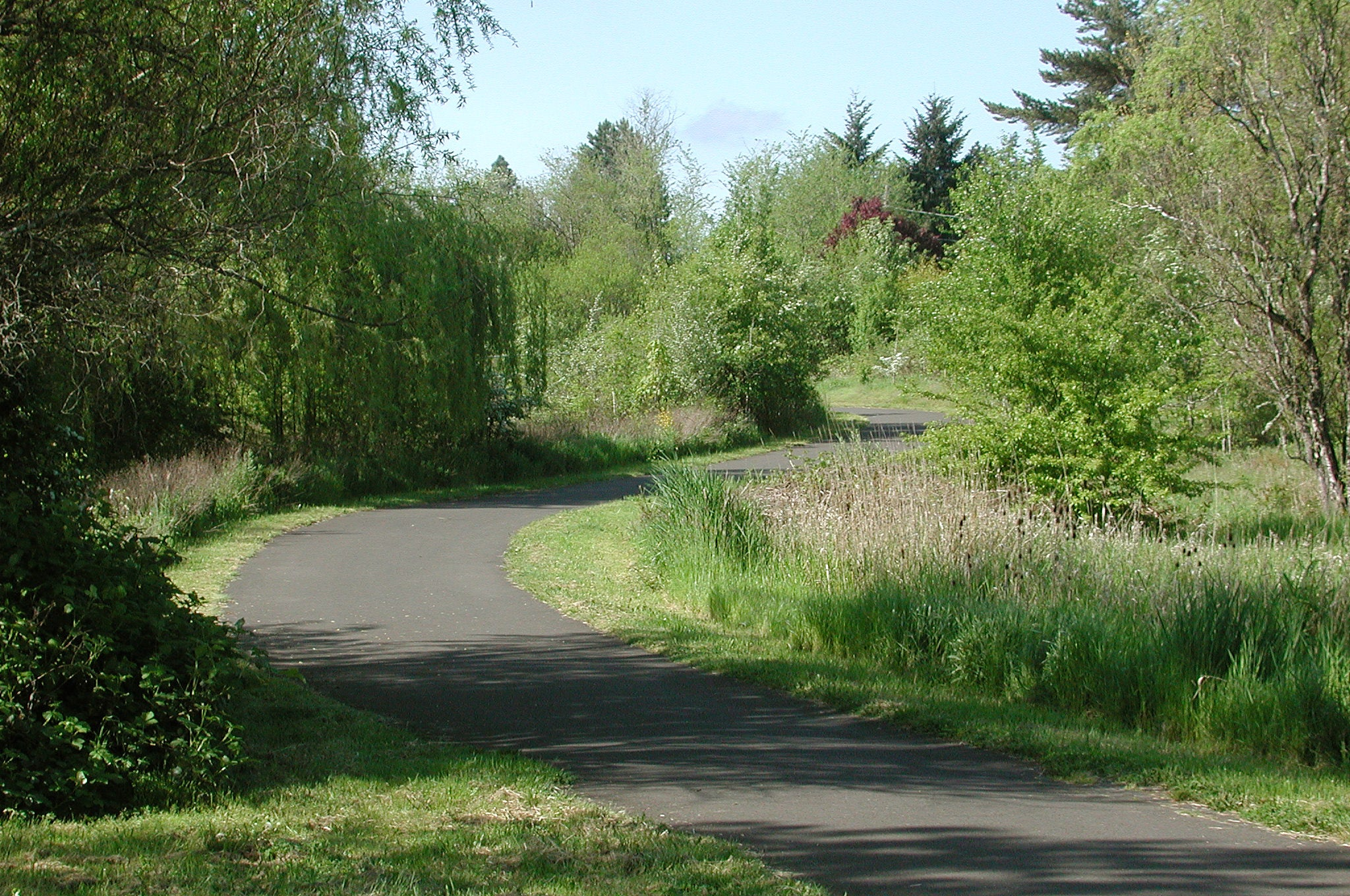 Fanno Creek Greenway Trail Beaverton Tigard Oregon