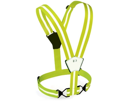 Amphipod Micro-Stretch Belt