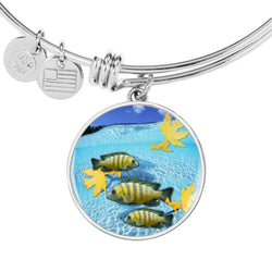 Afra Cichlid Fish Print Luxury Circle Charm Bangle-Free Shipping
