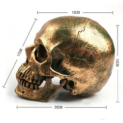 Family/Den - Bronze Human Skull Resin Crafts Life Size 1:1 Model Metal Decorative Skull