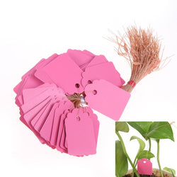 Outdoor - 100Pcs T-type PVC Waterproof Nursery Garden Plant Label Tag - Durable And Reusable Pink