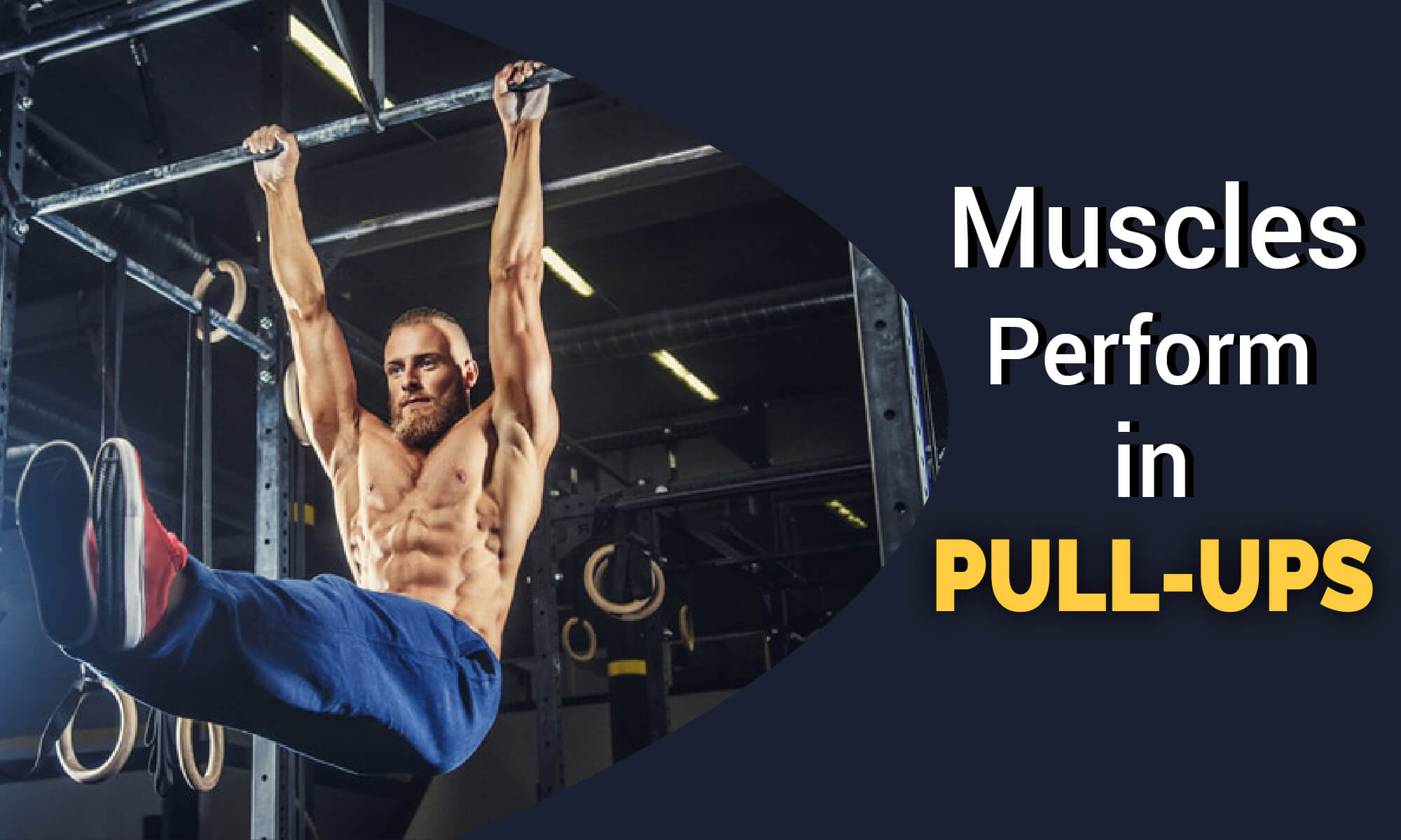 What Muscles Work & Perform in Pull-ups