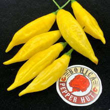 Aji Pineapple - Seeds - Bohica Pepper Hut