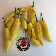 Aji Lemon Drop - Seeds - Bohica Pepper Hut