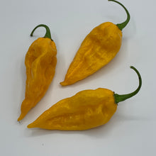 Fatalii - Seeds - Bohica Pepper Hut