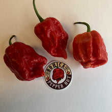 King Naga Jolokia  - Seeds - Bohica Pepper Hut