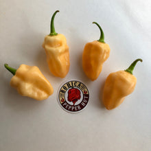 Peaches N Cream Ghost - Seeds - Bohica Pepper Hut